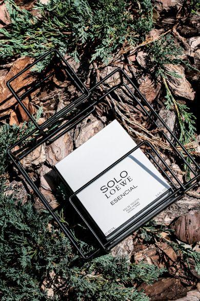 Как пахнет Средиземное: почему ты не захочешь отдавать Ему ароматSolo Loewe Essencial?