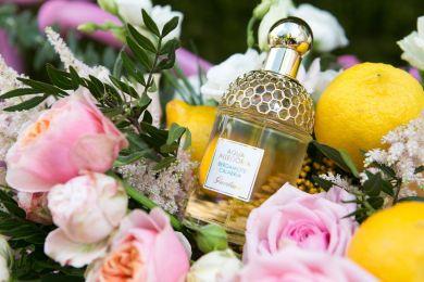 Как пахнет лето: презентация аромата Bergamote Calabria от Guerlain
