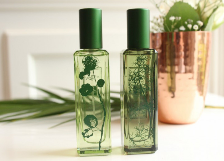 Пахнет свежестью: Лучшие зеленые ароматы для весны