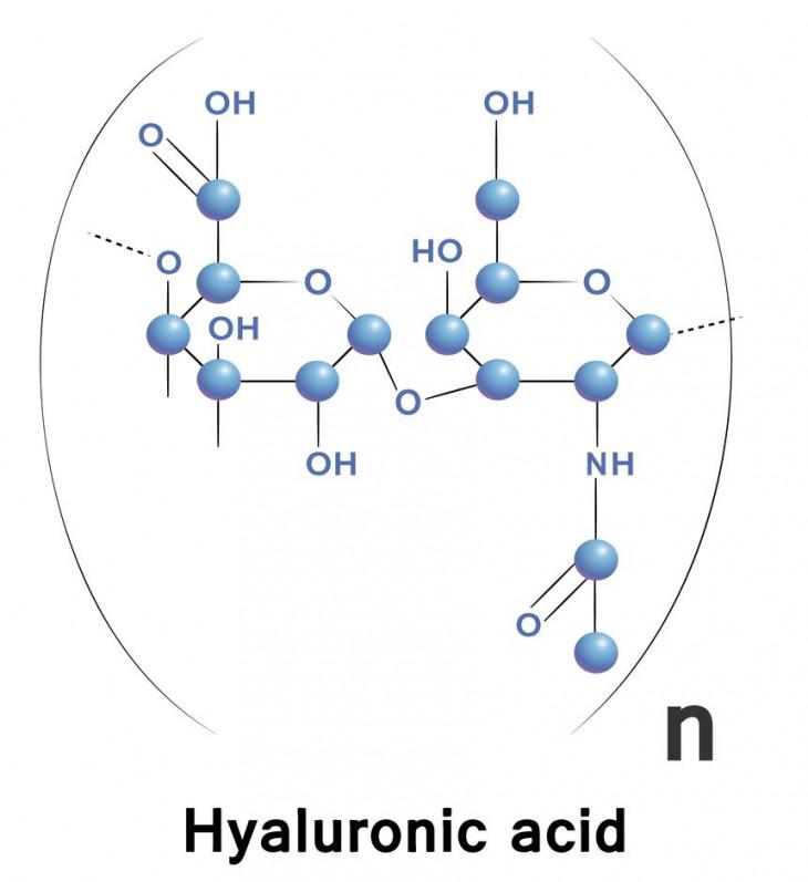 Гиалуроновая кислота для лица свойства