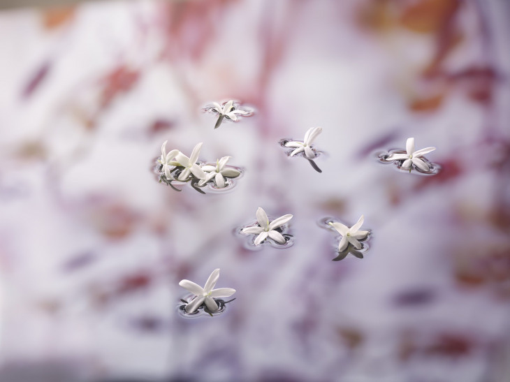 Аромат  Mon Guerlain Florale