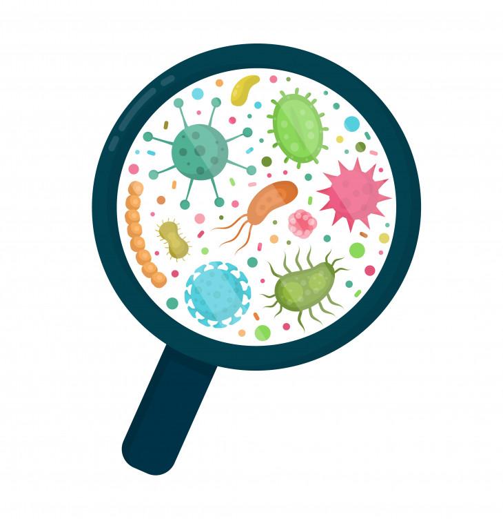 уход за кожей микробиом