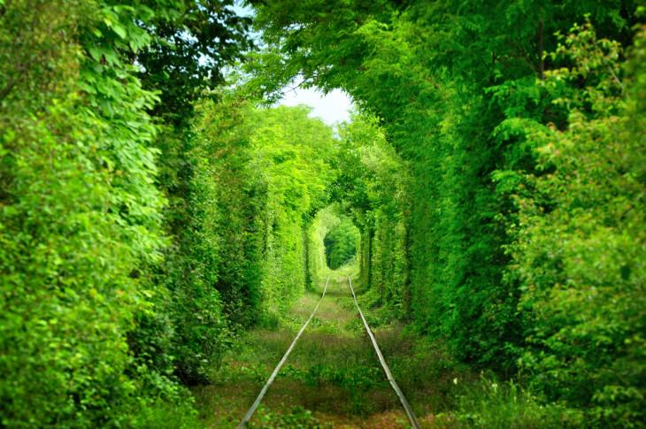 Тоннель любви, Клевань